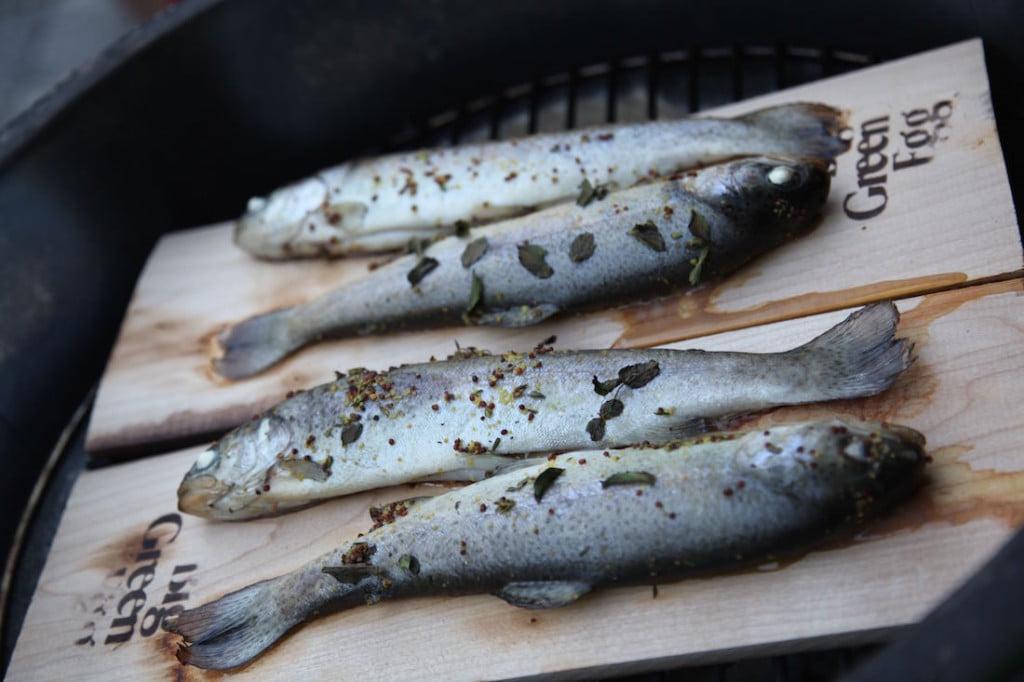 Fisch auf dem Holzbrett auf dem Big Green Egg